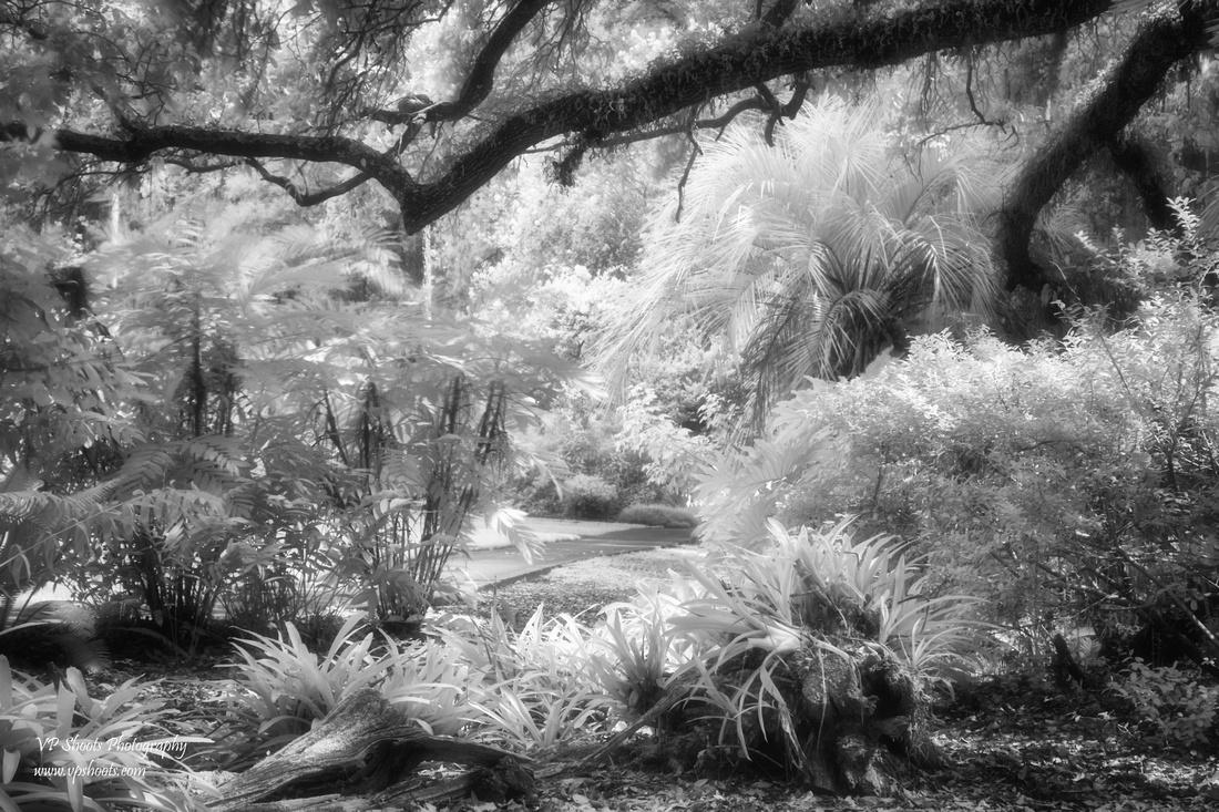 Eureka Springs Park infrared photo