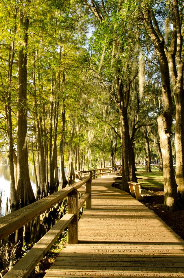 Boardwalk at Riverhills Park
