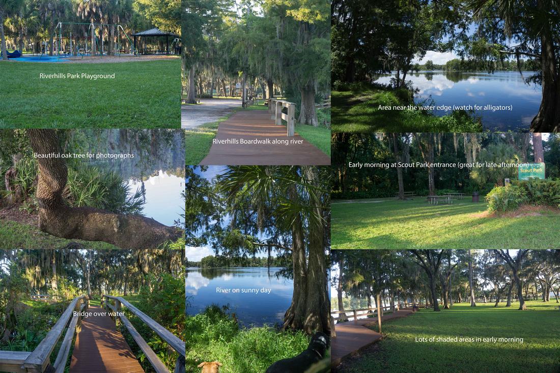 Scenes at Riverhills Park