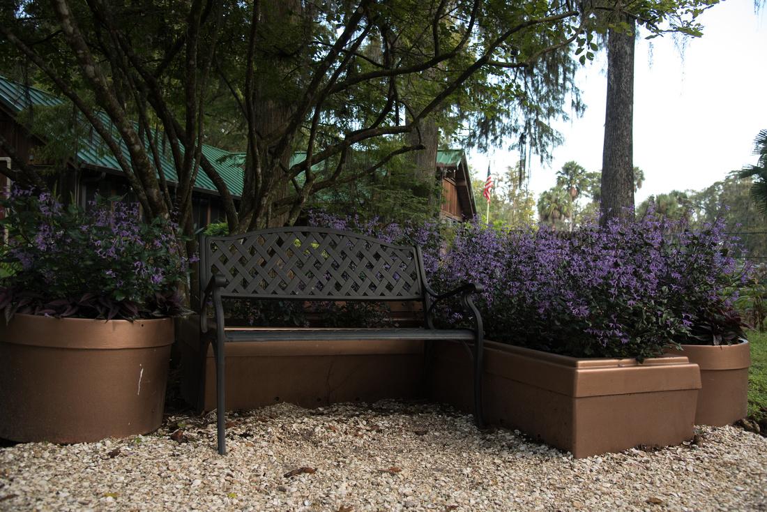 Eureka Springs Park bench